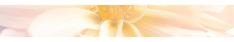 Les Beurres de Karité - Cosmétiques Bio à Angers - La Secourable