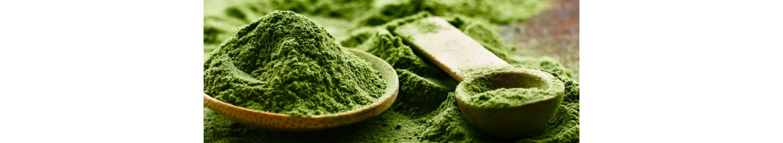 Nutrition bio et Bien-Etre par les Plantes - La Secourable