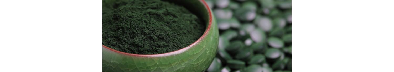 La Superfood - Nutrition bio par les Plantes - La Secourable La compatibilité du lecteur d'écran est activée.